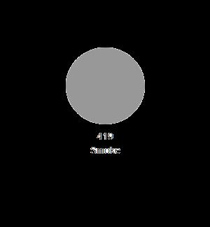 RC Colours Lexan Spray 150 ml grigio fumo trasparente 419