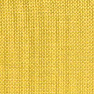 ReG Tessuto Kevlar 61 g/mq - 1 mq